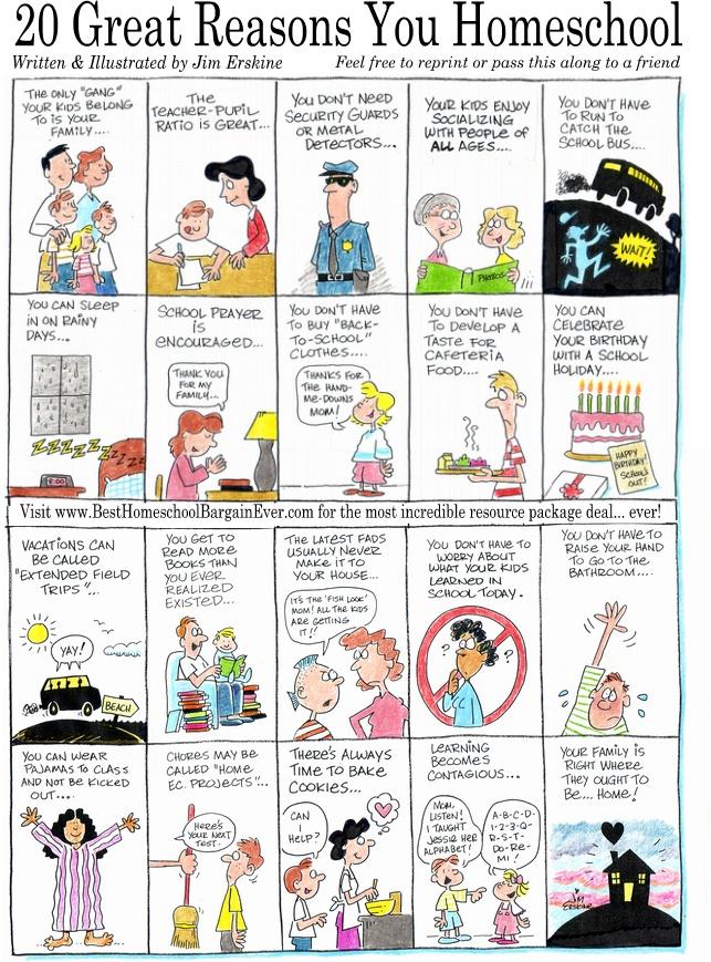 20-great-reasons-you-homeschool